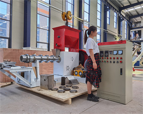 Dry type floating fish feed extruder machine extruder tilapia feed floating floting fish feed machine